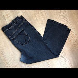 Lane Bryant bootcut Jeans - short